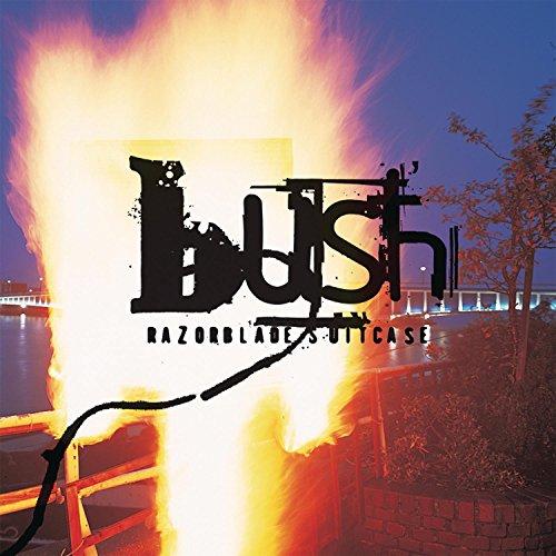 Best a bush