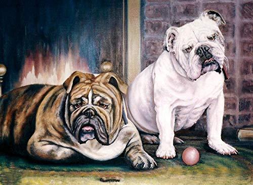 Pintar Por Números Para Niños Adultos Kit Dos Bulldogs Gordos Números Con Pintura Acrílica Para El Hogar Salón Decoraciones De La Imagen De La Oficina 40 * 50Cm