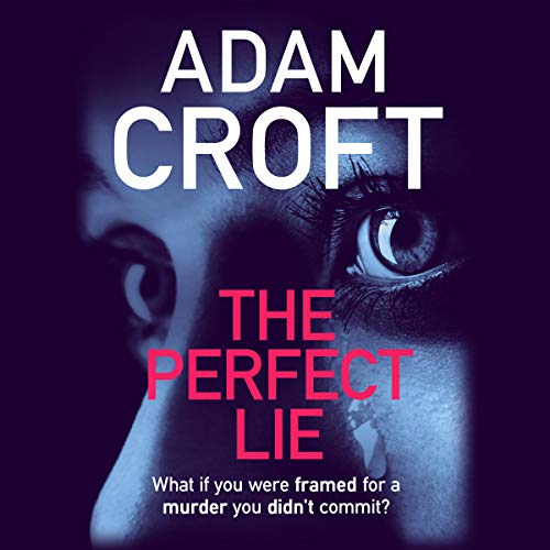 The Perfect Lie  By  cover art