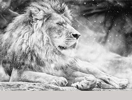Fototapete 3D Effekt Tapete 3D Schwarz Und Weiß Männlicher Löwe - Moderne Wanddeko Design Tapete Abstraktion Und Kunst-Tiere/Fauna Wohnzimmer Schlafzimmer Dekoration -350x256CM-XXL