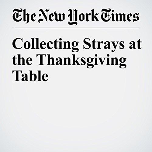 Collecting Strays at the Thanksgiving Table audiobook cover art
