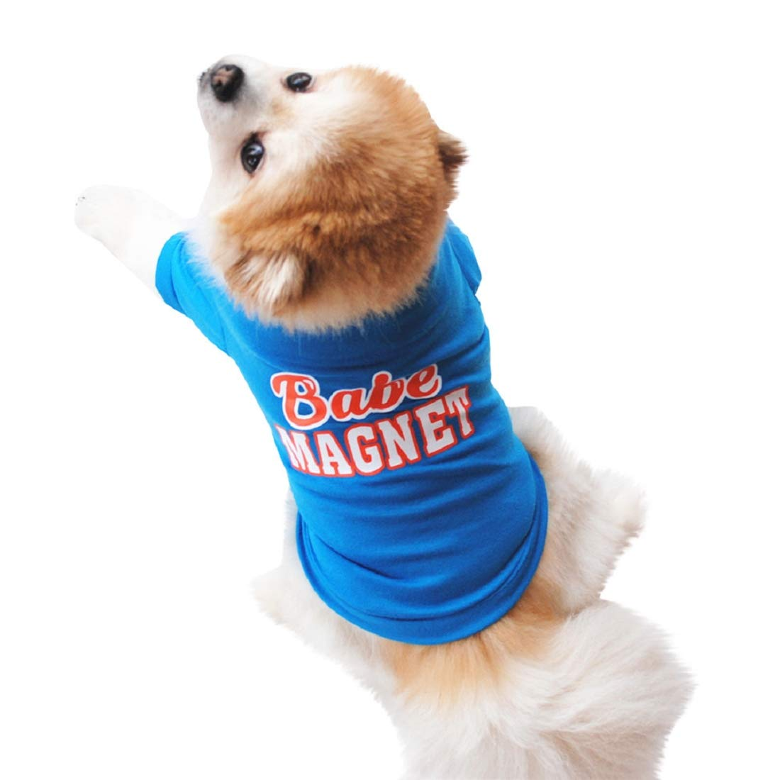 Amazon Com Small Dog Shirts Puppy T Shirt Soft Clothes Basic Breathable Summer T Shirt For Small Dog Cat Puppy Blue Kitchen Dining