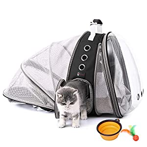 HOTLANTIS Cat Carrier Backpacks, Bubble Backpack for Small Dogs, Puppies& Kittens, Clear Pet Backpack Carrier for Cat Carrying Traveling Camping