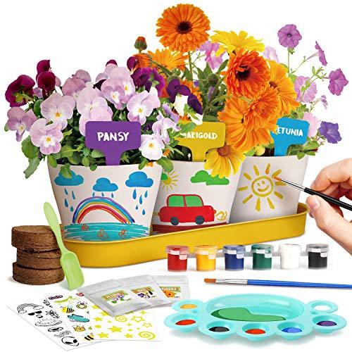 Dr. Daz Malen Garten Anzuchtset Pflanzen Geschenk Kinder Blumen Bonsai Pflanzen Züchten Kinder Set Experimentierkasten Ab 4 5 6 7 8 9 10 Jahre Mädchen