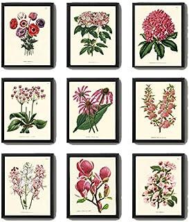 Antique Pink Flowers Print Set of 9 Beautiful Hydrangea Rhododendron Magnolia Apple Tree Spring Summer Garden Plants Botan...