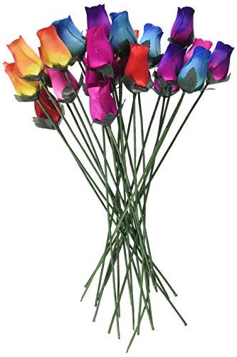 15 best dozen rainbow roses for 2020