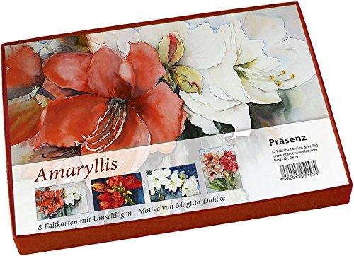 Amaryllis: 8 Faltkarten von Magitta Dahlke
