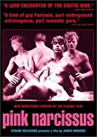 Pink Narcissus