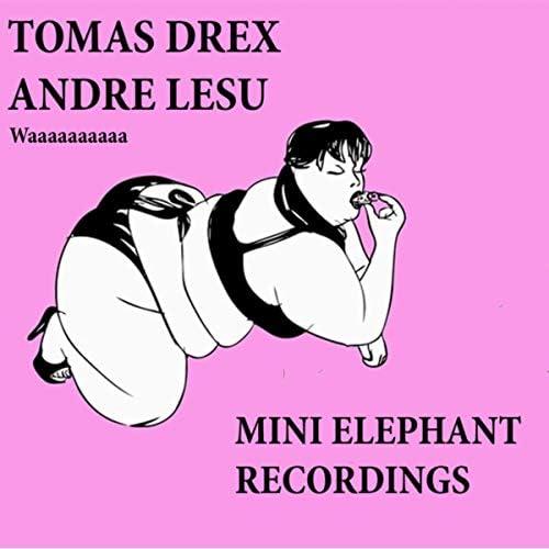Tomas Drex & Andre Lesu