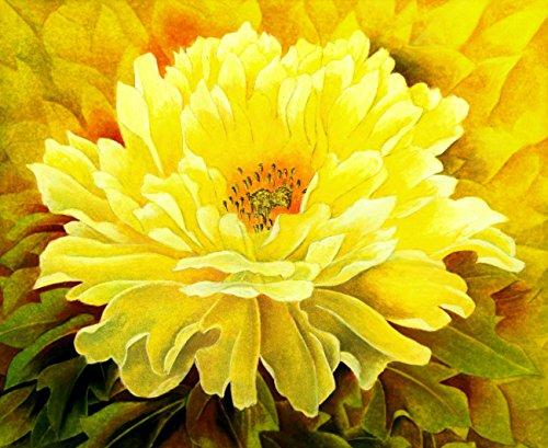 5 pièces/sac graines de pivoine, jaune, graines de fleurs de pivoine rose chinoise belles graines de bonsaï plante en pot pour le jardin de la maison