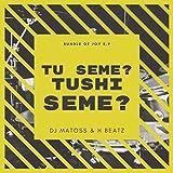Tu Seme? Tushi Seme? (feat. H Beatz) [Explicit]