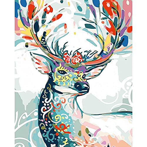 Pintura por números 50,8 x 40,6 cm, lienzo de bricolaje pintura al óleo para niños adultos principiantes con pinceles y pinturas acrílicas, de regalo decoración del hogar (2236, marco de madera)
