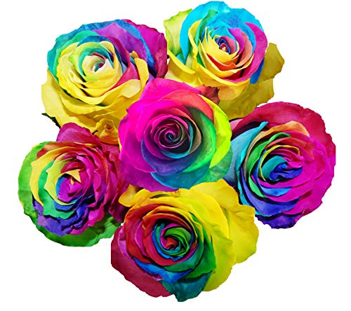 125 Real Fresh Cut Rainbow Rose | Fresh Flower Delivery -...