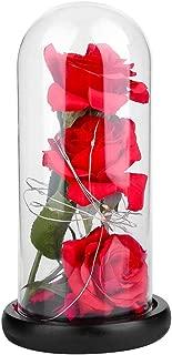 Xinwoer Simulación de Tela Flor + Cubierta de Vidrio + Base de Madera Luz LED, 3 Piezas Cubierta de Vidrio Simulación Flor de Rosa con luz LED Decoración