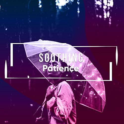 Rainforest Ambience & Rain Sounds & White Noise