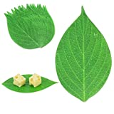 """[25 Pack] Leaf Cheese Paper for Charcuterie Boards - 7 x 4"""" -Cheeseboard Accessories, Disposable Grease Resistant Decorative Parchment Sheets in Serving Tray, Crackers, Fruits, Sushi Meat Platter"""