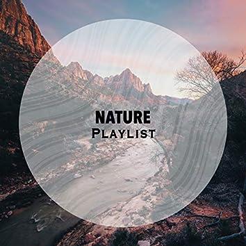 Reflective Native Nature Playlist