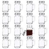 Kingrol 16 Pack 2 oz Mini Mason Jar Shot Glasses with Lids, Glass Favor Jars for Drink, Dessert, Candle, Craft