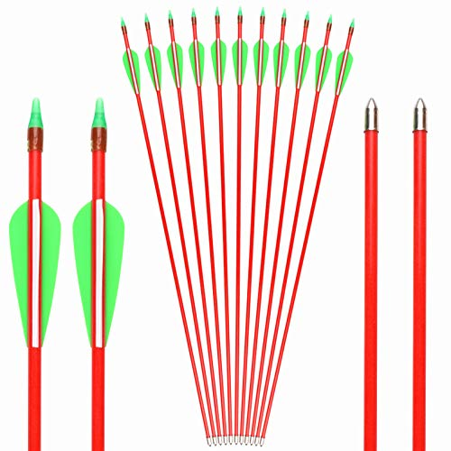 GPP 12 PK 28 Fiberglass Archery Target Arrows - Practice Arrow or Youth Arrow for Recurve Bow, Red