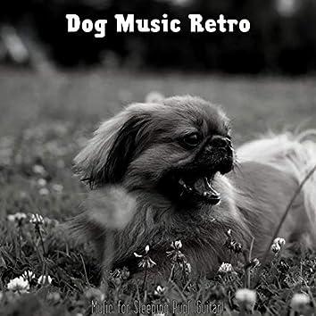 Music for Sleeping Pups (Guitar)