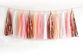 Shiny Tassel Garland Tissue Paper Tassel Banner,Table Decor,Tassels Party Decorations Supplies for Wedding,Birthday,Bridal/Baby Shower,DIY Kits,Pack of 20 - (Rose Gold/Light Pink/Peach Color/White)