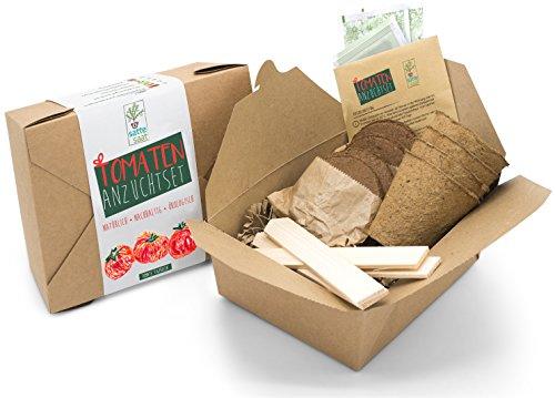 Satte Saat Verrücktes Tomaten Anbauset - Anzuchtset zum Anbauen seltener Tomaten wie Tigerella und Ochsenherz, inkl. Töpfe, Kokos-Erde, Holz-Sticks, Saatgut und Anleitung - eine tolle Geschenkidee