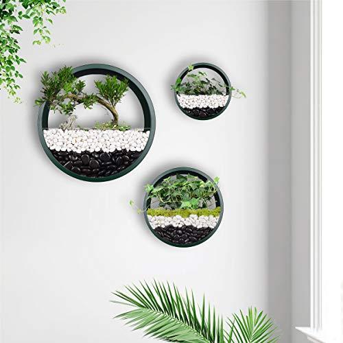 Juego de 3 macetas de pared redondas colgantes de metal para plantas circulares, soporte para...