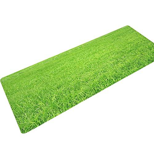 XHDM Rugs Teppich Läufer Flur,Weiche rutschfeste Läuferteppiche Frischer Grüner Rasen 3D-Druck Flureingang Anti-Ermüdungs-Teppich Für Schlafzimmer Küche Wäsche Außenteppich Maschinenwaschbar, 40