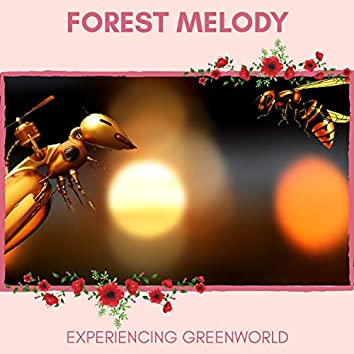 Forest Melody - Experiencing GreenWorld