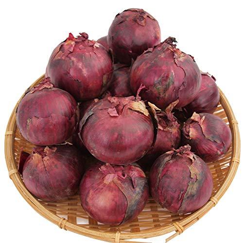 【レッドオニオン 3kg】無農薬栽培 サラダにぜひ 辛みの少ない玉ねぎ 無農薬栽培