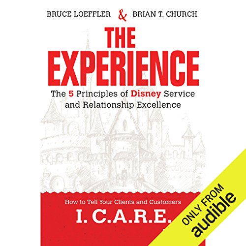 The Experience audiobook cover art