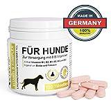 Vicupets® Vitamin B Komplex für Hunde   8 B-Vitamine, B12, Biotin und Mineralstoffe   für alte (Senior) Hunde und Junge Welpen   Made in Germany   120 Stück