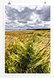 Eau Zone Home Bild - Landschaft Natur – Goldenes
