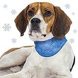 Schecker Kühlhalsband für Hunde Größe S/M blau Kühlwirkung durch Kühlgel Füllung Sofort einsetzbar Ideal auch für Autofahrten