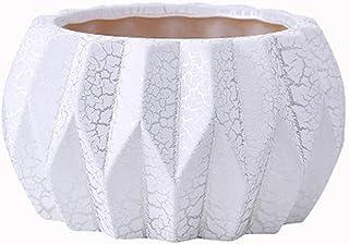 Bcaer Pote de flor de cactus con agujeros de drenaje, flor del jardín decoraciones interiores y exteriores pequeñas vasijas de cerámica, plata agrietado olla de barro, calentar el plantador de la cala