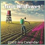 Texas Wildflowers 2022 Calendar: Official Texas US State Calendar 2022 16 Months