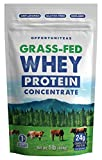 Grass Fed Whey Protein Concentrate - Premium Unflavored Protein Powder - Cold Processed Wisconsin Grass-Fed Protein for Any Smoothie, Shake, Drink, Recipe, or Food - Gluten Free & Non-GMO - 1 Pound