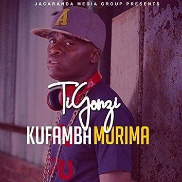 Kufamba Murima
