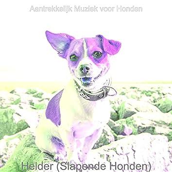 Helder (Slapende Honden)