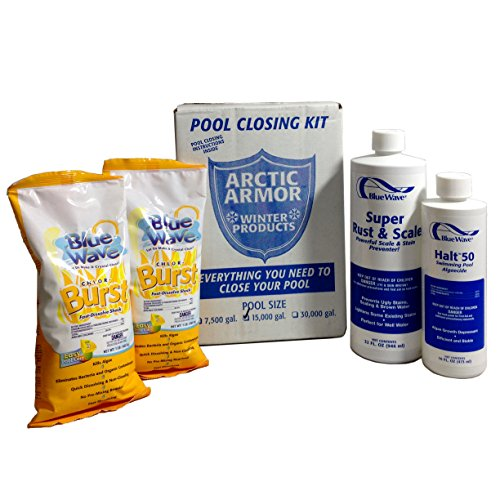 Blue Wave Medium Chlorine Pool Winterizing Kit