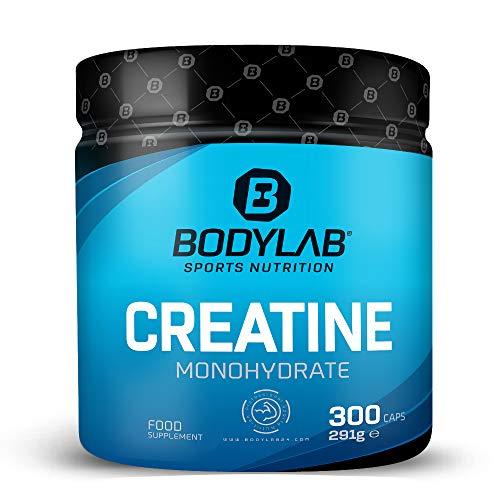 Bodylab24 Creatine Kapseln 300 Stück | reine Creatin Monohydrat Caps | Hochdosiertes Kreatin für den Muskelaufbau