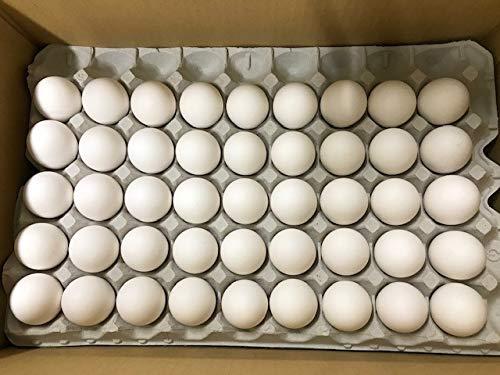 """【工場直送】イセ食品 """"森のたまご 白 Mサイズ10k 約165粒"""" 業務用段ボール"""