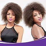 synthétiques court bouclés perruque Afro africain américain Super Fluffy Perruques pour femme noire Couleur naturelle 12 pouces (#1B)