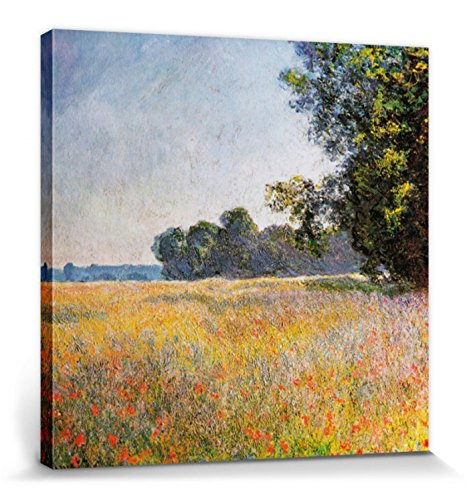 1art1 Claude Monet - Campo De Avena Y Amapolas, 1890 Cuadro, Lienzo Montado sobre Bastidor (70 x...