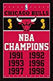 Chicago Bulls - Champions 13 Poster Drucken (55,88 x 86,36