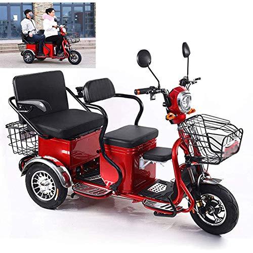 YEDENGPAO - Patinete eléctrico plegable para ciclomotores (triciclo, personas mayores, dos asientos, tres ruedas, discapacitados), batería de litio 48V600w12ah