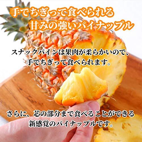 沖縄県産スナックパイン(ボゴール種)ちぎって食べるパイン沖縄琉堂(1.6㎏以上(2玉~3玉))