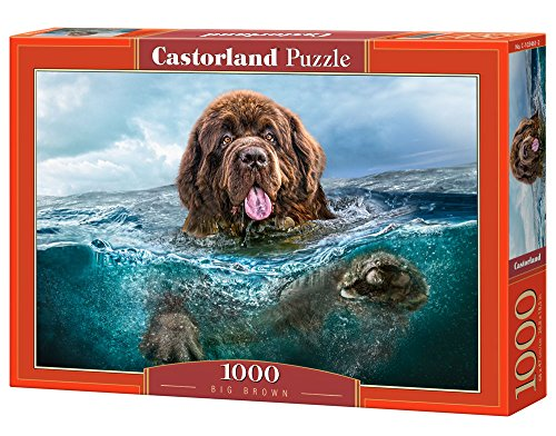 CASTORLAND Big Brown 1000 pcs Puzzle - Rompecabezas (Puzzle Rompecabezas, Fauna, Niños...