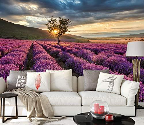 awallo Fototapete – Motiv «Lavendelfeld» in Blau, Gelb, Lila | 336x260cm | XXL Bild-Tapete Wand-Bild Digitaldruck | hochwertige Vliestapete – Made in Germany | einfache Verarbeitung