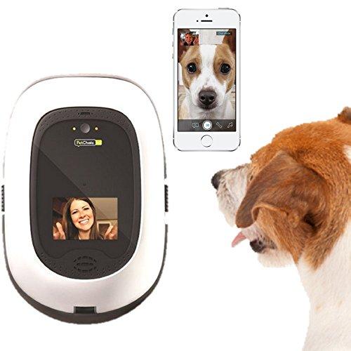 PetChatz HD: two-way premium audio/HD video pet treat camera